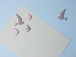 Top view, flatlay, lie concept view of color background with pigeon, background for children's party, Design of Greeting Card With Bird On, Pastel background For Stock Photos or Illustration