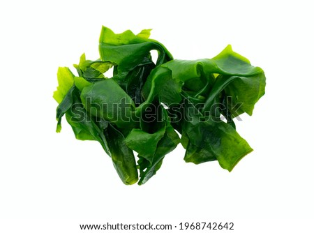 Top view healthy Japanese Wakame seaweeds, isolated beautiful Wakame seaweeds on white background.
