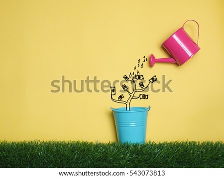 Top view Investment is like planting trees. Take care it will provide a good growth on colorful background.Watering can and money tree drawn concept for business investment, savings and making money.