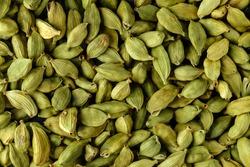 Top view macro closeup on plenty of green cardamom spice, horizontal format