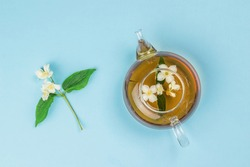 Top view of a jasmine flower and a glass teapot with tea on a blue background. An invigorating drink that is good for your health.