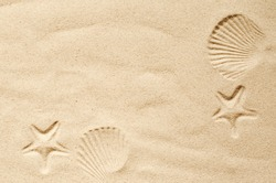 Top view of a sandy beach, texture of clean sand of a natural surface. Sand background. Imprints of mollusks and starfish in the sand.
