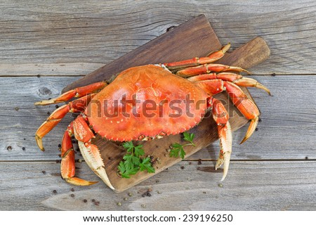 Top view of a steamed Dungeness crab on wooden server board with herbs and spices ready to eat.
