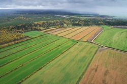 Top view of agricultural fields with forest areas in the fall against the background of the rain sky. Aerial photo of landscape