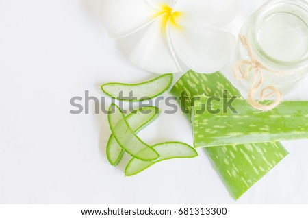 Top view of aloe vera slice with mini bottle and white plumeria flower isolated on white background.