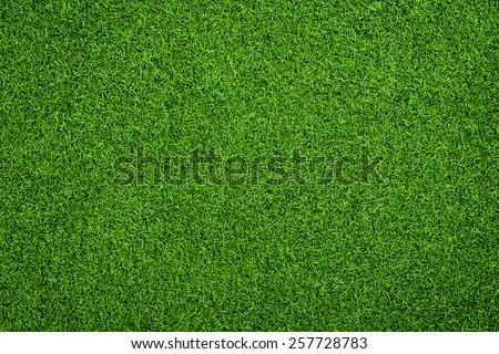 Top view of Artificial Grass