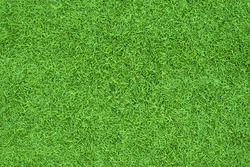 Top view of Artificial Grass green. background texture