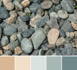 Top view of beautiful colorful stones and round pebbles on rocky beach. Pastel beige creamy and green gray ground gamma. Color palette swatches, natural combination of colors, inspired by nature.