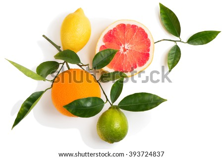 Top view of citrus fruits (grapefruit, orange, lemon, lime) on a branch with green leaves isolated on white background. #393724837