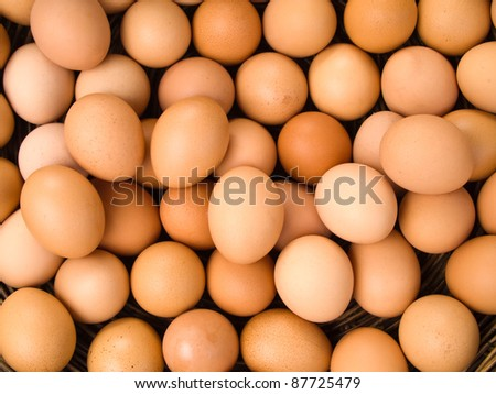 Top view of egg for web background
