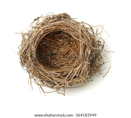 Top view of empty bird nest isolated on white
