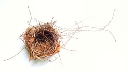 Top view of empty bird nest isolated on white background. Real empty bird nest brown color.