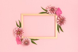 Top view of flower border frame made of dahlia on a pink background. Greeting card template with copyspace. Springtime concept.