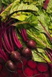 Top view of four washed beet, beetroot, beet slices, beet leaves for food background.