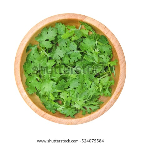 Top view of fresh coriander leaves in wooden bowl on white background. #524075584