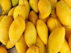 Top view of fresh yellow mango as a background in the market at Thailand (Mangifera indica), Tropical fruit