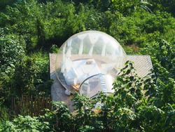Top view of glamping transparent wall bubble hotel, geo dome tent, in the jungle in Chiang Mai