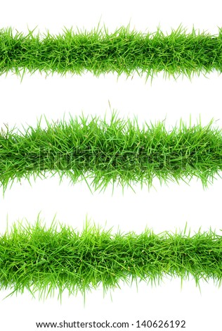 Top view of grass on white background