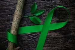 Top view of green color ribbon with tree leaf on dark background. Gall bladder and bile duct cancer, mental health, cerebral palsy awareness, organ donation, world kidney day and environmental care.