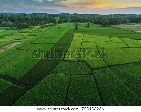 Top view of green field for background, aerial beautiful landscape photos view from above in countryside.