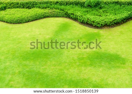 Top view of green lawns, green lawns and shrubs, Lawn nature green #1518850139
