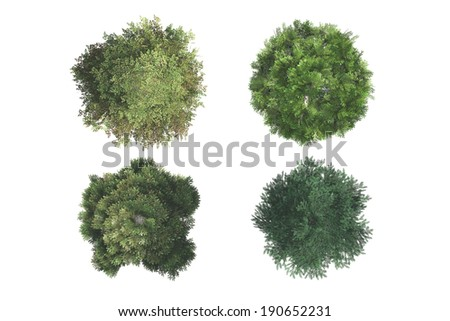 Top view of green natural trees, isolated on white background. #190652231