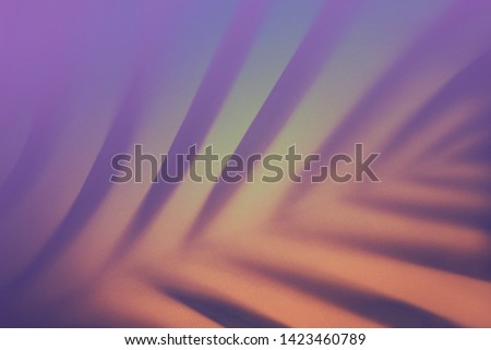 Top view of green tropical leaf shadow in trendy duotone neon background. Flat lay. Minimal summer concept with palm tree leaf. Abstract creative backdrop for modern design. Copy space. Blurred.