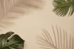 Top view of green tropical leaves and shadow on sand color background. Flat lay. Minimal summer concept with palm tree leaf. Creative copyspace.