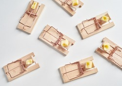 Top view of many cocked wooden mousetraps loaded with cheese baits, sitting on white surface