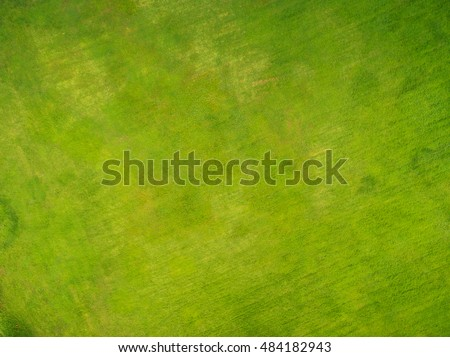 top view of park  natural grass ...