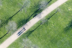 Top view of people walking in park with low sun and shadows in winter time