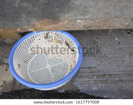 Top view of plastic basket that helps separate food waster before going into the sewer or the drain. Help saving environment