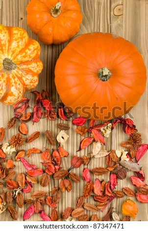 Top view of pumpkins on a wooden background