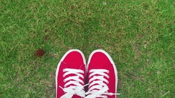 Top view of red converse all star shoe on the green grass background