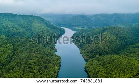 Top View of River, Aerial view of forest, Texture background of forest.