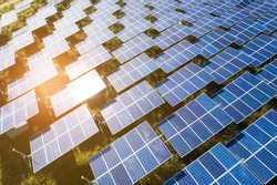 Top view of solar panels (solar cell) in solar farm with green tree and sun lighting reflect .Photovoltaic plant field.