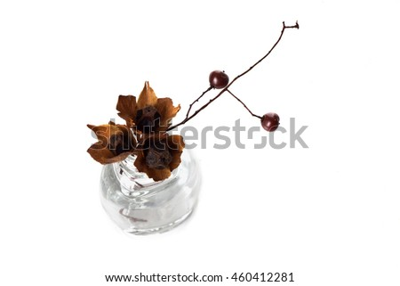 Free Photos Bunch Of Flowers In Clear Glass Vase Isolated Over White