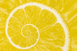 Top view of textured ripe slice of lemon citrus fruit with spiral endless skinned. Cool yellow citrus fruit background.