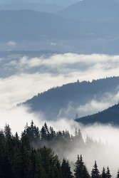 Top view of the mountains in the morning fog. Fog in the mountains