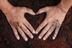 Top view of two hand making a heart shape on ground soil.