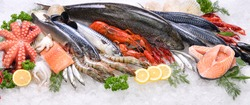 Top view of variety of fresh fish and seafood on ice