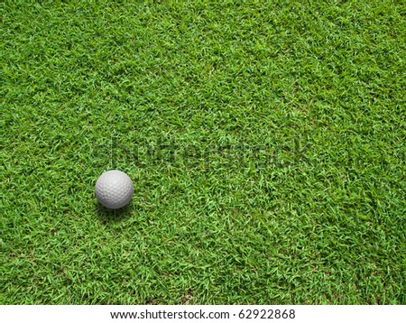 Top View of white Golf ball on Green Grass
