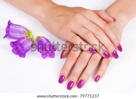 Top view of woman hands with purple manicure and flowers
