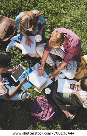 top view of young multiethnic students studying together while sitting on grass
