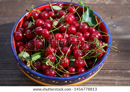 Top view on the vintage rustic colorful bowl full of fresh red riped sour cherries, full of vitamins on the old wooden table just after harverst in the garden. Picture taken in sunny summer afternoon.