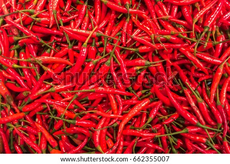 Top View Pile of Fresh Red Hot Chili in The Basket for Sale in Bangkok, Thailand Background Texture or or Template to mock up or input Text #662355007
