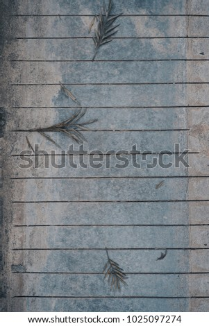 Top View Surface Of Beautiful Aged Dried Leaves Falling On Articulate Gray Concrete Cement Stone Floor