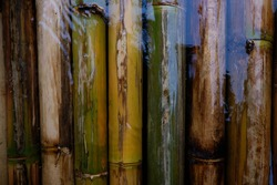 Top view texture of bamboo raft under water surface.