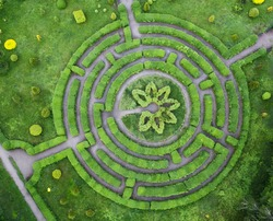 Topiary garden in the shape of a labyrinth, in the botanical garden Grishka in Kiev.