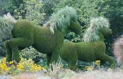 Topiary on a large scale. Full scale and larger animals, people and machines imaginary and real.